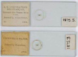 Two microphotograph slides