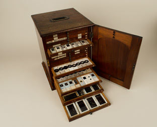 Wooden cabinet containing several hundred foraminifera slides.