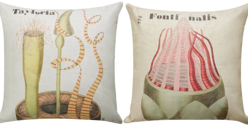 Cushion designs based on Henslow prints