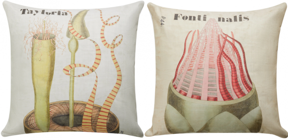 Cushion designs based on Henslow prints