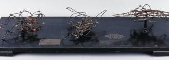 Wire model of the motion of a particle during an earthquake.